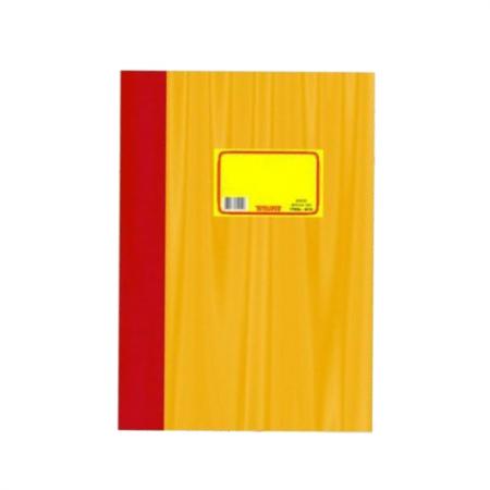 Εσόδων Εξόδων Ελέυθερου Επαγγελματία Διαστάσεων 21 Χ 29cm - 100 Φύλλων  Υπόδειγμα 3 - 361